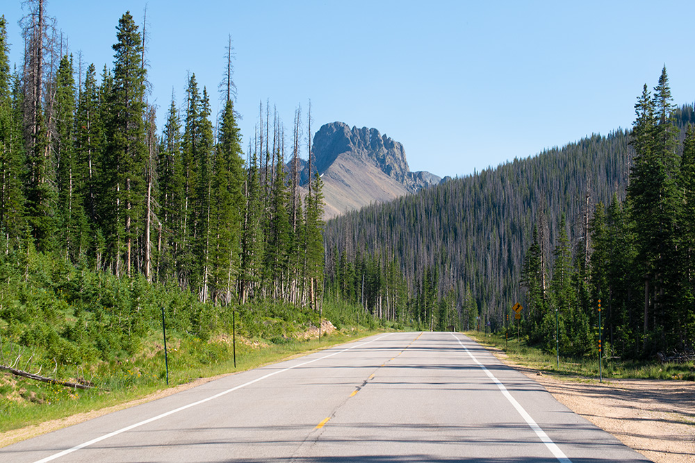 Cameron Pass Hwy 14