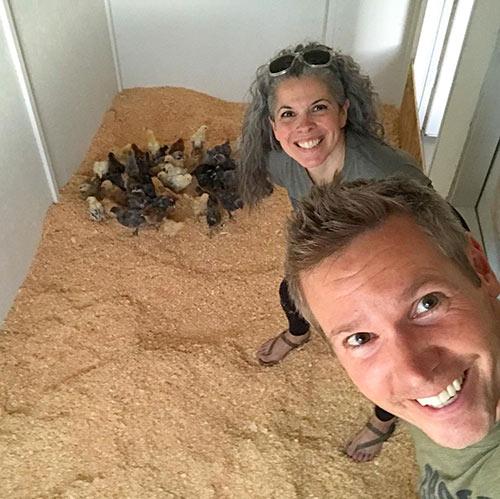 Indoor Chicken Coop