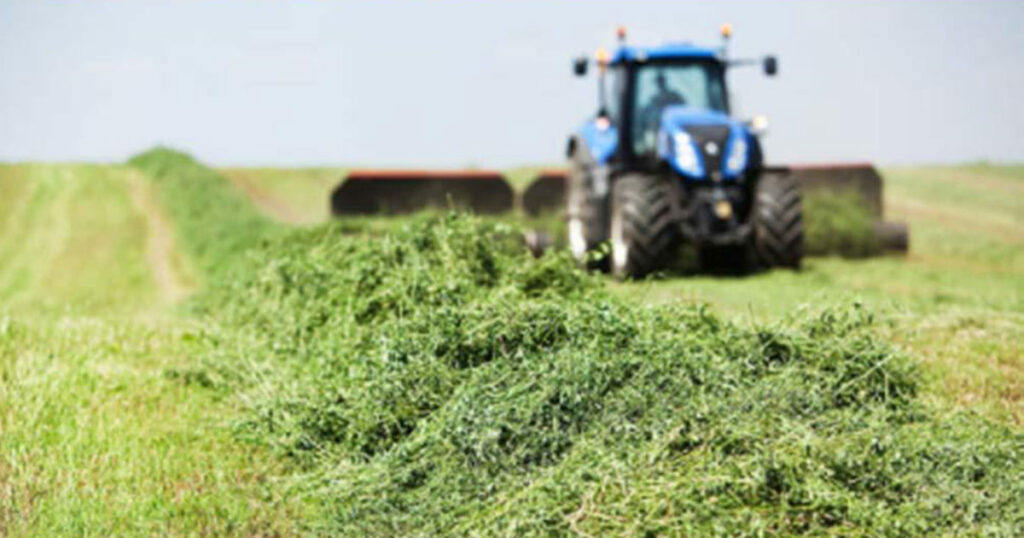 farming for hay